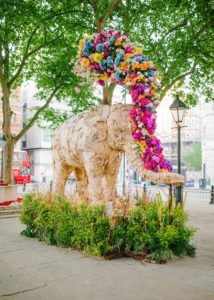 Floral Elephant by Amy O'Boyle at Chelsea In Bloom: Sloane Square Animals