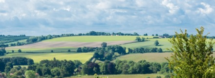 Rural sector update: Agricultural subsidies and preparing for an uncertain future